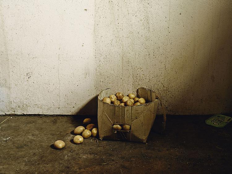 © Pieter Hugo, courtesy Galerie Stevenson, Le Cap/Johannesburg et Yossi Milo, New York